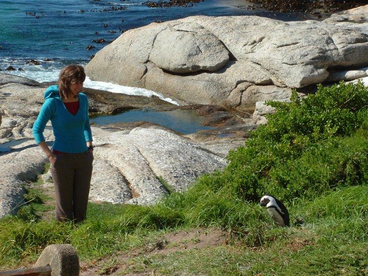 Tussen de pinguïns op Boulders Beach