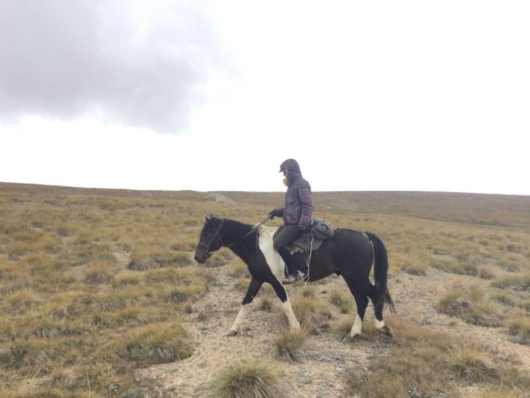 Kirgizië bergen kamperen paard