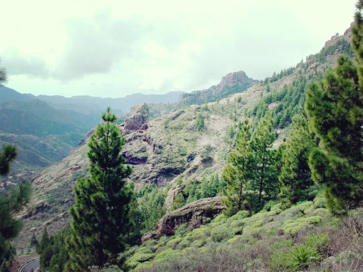 Gran Canaria (17)